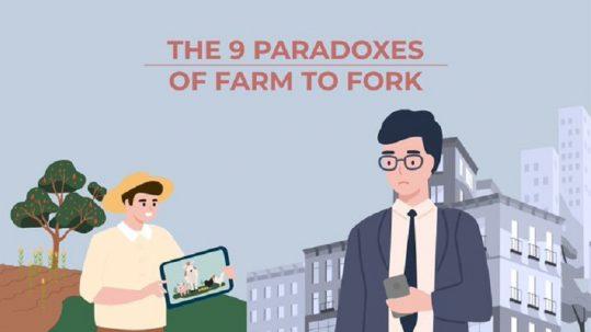 FAC_avicultura_paradoxes